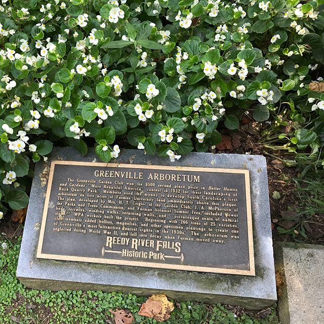 Greenville Arboretum.jpg